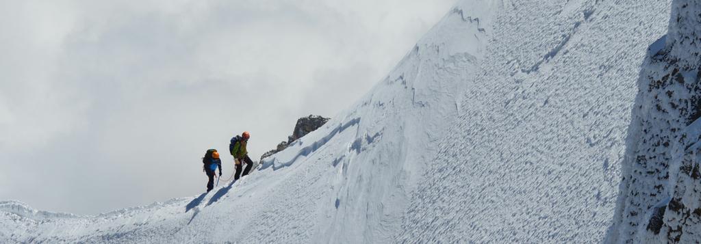 koen en tijs pauwels consulting climbed mont blanc