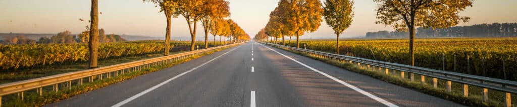 road to dream job